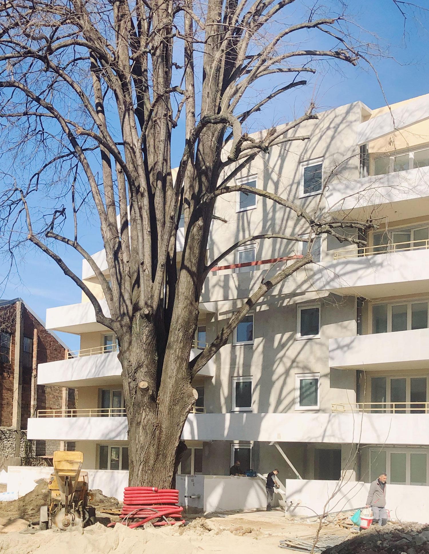 Résidence les villégiales de la Baronnie - Alès - Chantier - zoom - TAUTEM Architecture